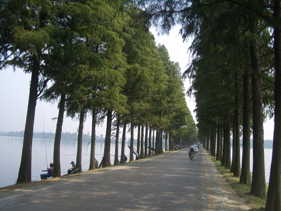 Wuhan-Donghu-dike-0375